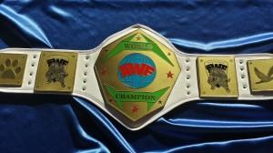 AWF Heavyweight Title